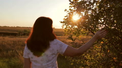 Girl at sunset and goes to touch the branches of trees Stock Footage