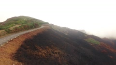 Burned forest after fire Madeira, Portugal aerial view Stock Footage