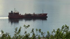 The ship floats on the water against a background of tree branches. Stock Footage