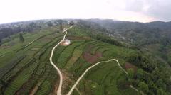 Drone China Chengdu Tea Terrace Skyview Stock Footage