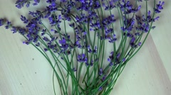 Lavender herb bunches. clockwise turntable Stock Footage
