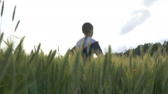 Boy running on a wheat field at sunrice Stock Footage