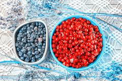 Cranberries And  Blueberries On Openwork Tablecloth Stock Photos