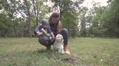 Mother with her child and little dog playing in autumn park Stock Footage