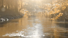 Flowing River in Autumn Park Stock Footage