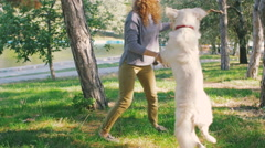 Young female playing with labrador retriever dog in park, slow motion Stock Footage