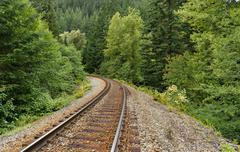 Railroad passing through the quiet green forest Stock Photos