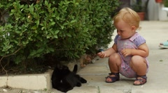 Little girl walks and plays with black cat Stock Footage