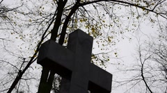 Cemetery trees and cross Stock Footage