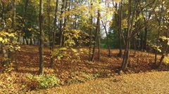 House at the lake bank in autumn. Stock Footage