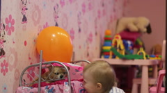 Girl plays with chihuahua in doll bed Stock Footage