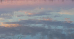 Calm Marsh Water at Sunset Stock Footage