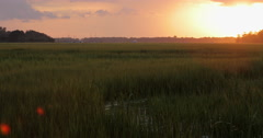 Marsh at Sunset with Industrial Ship Cranes Stock Footage