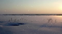 Snowfall on the sunset background Stock Footage