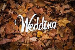 Autumn wedding wooden sign on the leafage Stock Photos