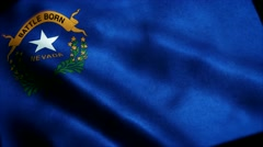 Loopable: Flag of Nevada 60fps Stock Footage