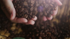 Woman picking up in the palm of a handful of coffee bens Stock Footage
