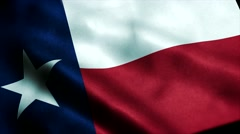 Loopable: Flag of Texas 60fps Stock Footage