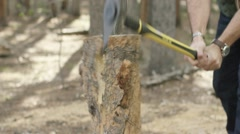 Man chopping wood in forest in forest Stock Footage