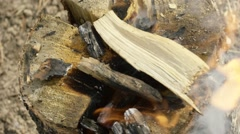 Burning bonfire in forest Stock Footage