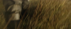 Fisherman walking in grass Stock Footage