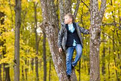 Cute teenager boy sitting on a branch of tree in autumn park Stock Photos