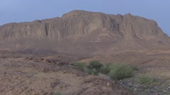 Low green bushes in the stony desert of Hoggar Mountains in the afternoon Stock Footage