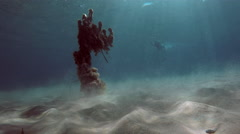 An old abandoned fishing net on the bottom of the Aegean Sea in Greece Stock Footage