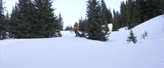 Husky dog running behind a snowboarder Stock Footage