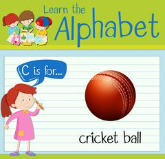 Flashcard letter C is for cricket ball Stock Illustration