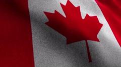 CANADA, Textile Carpet Background, Still Camera, Loop, 4k Stock Footage