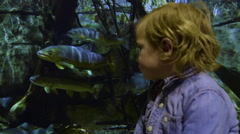 Little Boy Watches Fish In Aquarium Tank, He Turns Away And Looks Nervous Arkistovideo