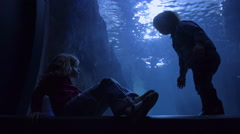 Children Wait For Animals/Fish To Swim By In Huge Tank At An Aquarium Stock Footage