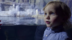 Little Boy Stands Next To Penguin Exhibit, Talks To His Sister (Off-Screen) Stock Footage
