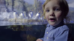 Excited Little Boy Turns And Points To Penguins In Exhibit Stock Footage