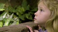 Little Kids Lean Against Wall To Get Close To Exhibit, Look Around At Plants Stock Footage