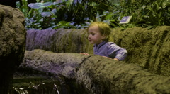 Little Boy Looks Into A Touch Tank At The Aquarium Stock Footage