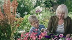 Senior Lady Gardening with Grandchildren Stock Footage