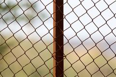 Metal mesh in nature as a background Stock Photos
