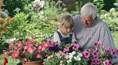 Elderly Man and Little Girl Looking at Flowers Stock Footage