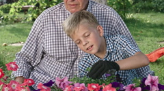 Grandfather and Little Boy Gardening Together Stock Footage