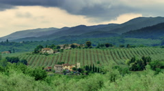 Dramatic Rain Clouds over Tuscany Grapevines - 25FPS PAL Stock Footage