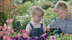 Boy Teaching Sister Gardening Stock Footage