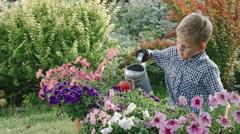 Boy Watering Flowers in Garden Stock Footage