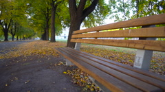 Wooden Bench in the Park Stock Footage