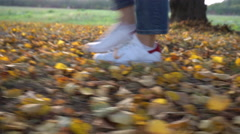 Woman Walking at the Yellow Autumn Leaves Stock Footage