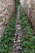 Narrow village alley with stone walls Stock Photos