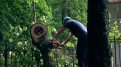 Male gardener working on felled tree with chain saw Stock Footage