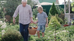 Little Boy and Elderly Man Carrying Basket with Harvest Stock Footage