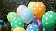 Colorful inflated helium balloons polka dots in the bundle are flying off the Stock Footage